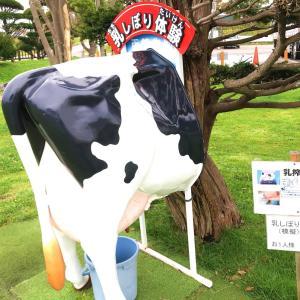【函館牛乳 あいす118】コロッケのおやつコロッケ感が良き味