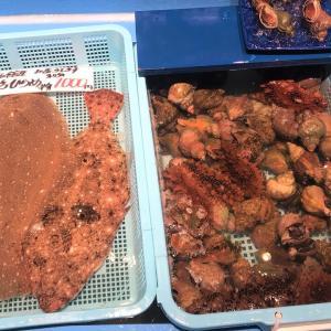 【夏祭】函館海鮮市場本店のイベントに行く セールは8/7まで