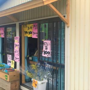 【野菜はあるが名前はない」函館市戸倉町の野菜直売所