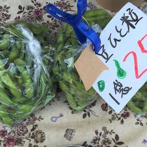 【函館中島廉売の路地裏で】一粒枝豆を安くゲット