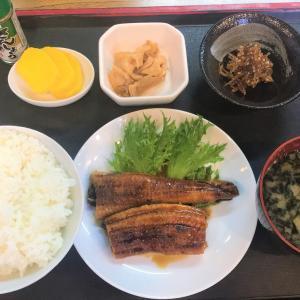 函館朝市でうなぎ定食980円で食べた 五聚富(ゴシップ)でね