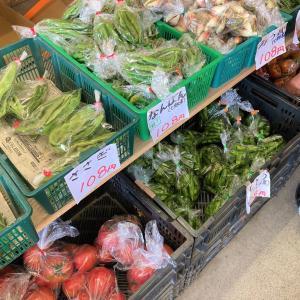 【七飯町 野菜直売所の新鮮ふるさと直売はいつも人気】初めて まんまのハバネロを手に入れた