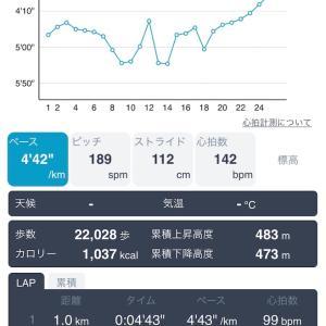 24.5キロ金華山起伏走 10月26日