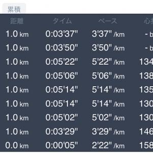 5キロ+1キロ 11月16日