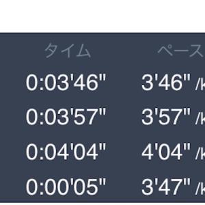 12キロペース走 12月7日