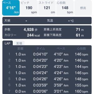 12キロペース走 1月26日