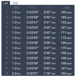 12キロペース走 2月12日