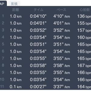 10キロMペース走 2月14日