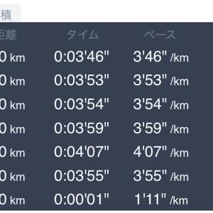 4月21日 10kmペース走
