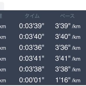 4月24日 5km+1km