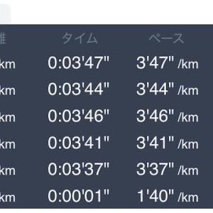 5月8日 5km+1km