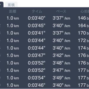 6月2日 10kmペース走