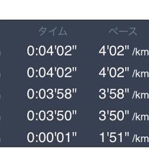 6月12日 10kmペース走