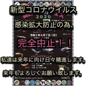 長崎在住者限定、応募者募集!