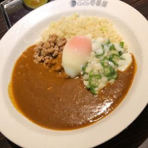 東北福島デリヘル風俗 福島美女図鑑 2月15日(土)低糖質カレー