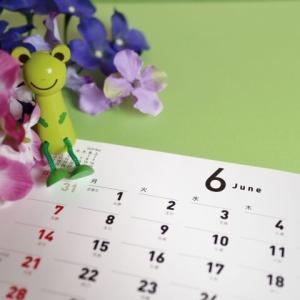 東北福島デリヘル風俗 福島美女図鑑 6月1日(月)宿泊補助券