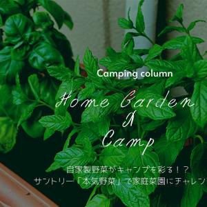 自家製自家製野菜がキャンプを彩る!?サントリー「本気野菜」で家庭菜園にチャレンジしてみよう!
