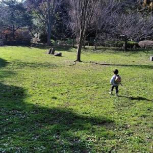 鎌倉中央公園