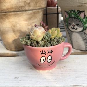 小さなカップに。