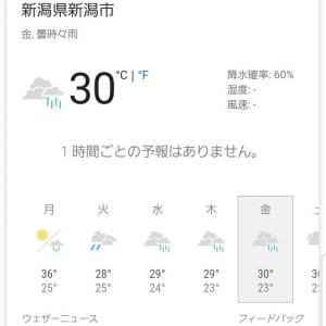 8月19日 雨(-人-)