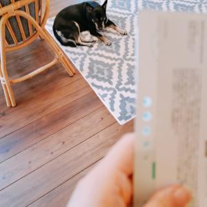 郵便物を取ったら【整理収納アドバイザーの暮らし】