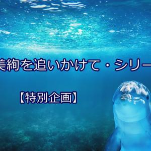 朝美絢・刹那の煌めき『義経妖狐夢幻桜』
