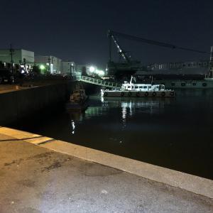名古屋港でヒイカ調査!ヒイカ釣れるかな?