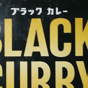 イオンブラックフライデーでもらったブラックカレー