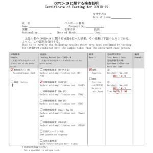 日本帰国*パスポート取得&陰性証明
