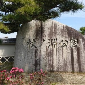 弘法大師ゆかりの地、杖ノ淵公園は遊具あり、水遊びや鯉の餌やりもできる日本庭園
