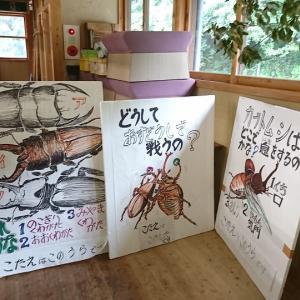 カブトムシを飼ったことありますか?道の駅で開かれる「かぶと虫まつり」「かぶと虫鑑賞会」に行ってきた