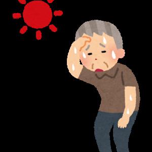 【熱中症】1度熱中症になるとクセになる?