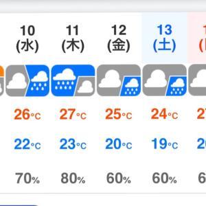 大阪も梅雨入りしました