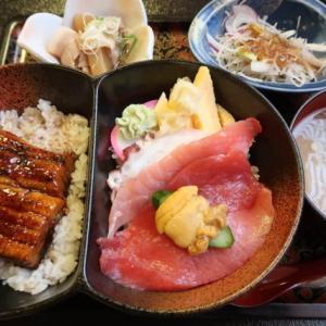 泉区みずほ台・力寿司泉店清柳館で「W丼」//ウナギと生ウニ・マグロ刺の2大豪華丼ものが一緒に味わえる。