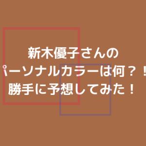 新木優子さんのパーソナルカラーを予想してみた!