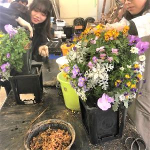 日本ガーデンデザイン専門学校2年生の授業