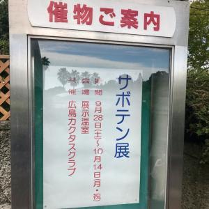 広島カクタスクラブ サボテン展