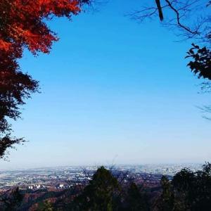 高尾山の紅葉がおすすめ(^^)メニエールのリハビリにもぜひ♪