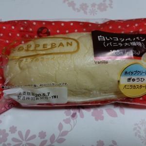 ファミマで売っている白いコッペパンがお気に入りなのに売っていない
