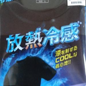 500円!ワークマンの放熱冷感Tシャツがコスパ良すぎた