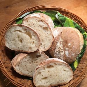 ヨーグルト酵母で100%天然素材のパン