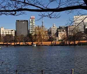 65s 東京の人と東京人・・・・。