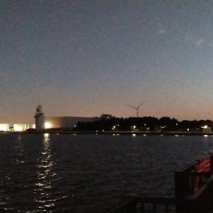 65s ジジィ、東京湾でコハダ釣り・・・。