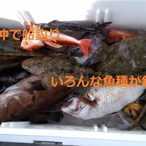 久々の船釣り。粟島沖で根魚を釣ってきた:20200613