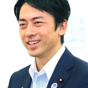 小泉進次郎環境相の国連環境会議でのセクシー発言の意味はおかしい?