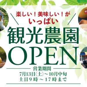 観光農園オープン!!
