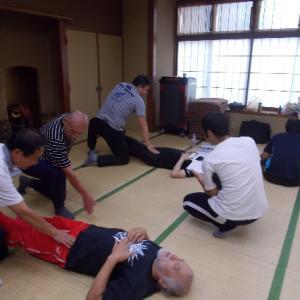 2019年バランス反射療法研究会・外膝眼と内膝眼