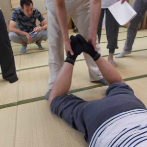 9月バランス反射療法研究会・下肢の回旋操法1