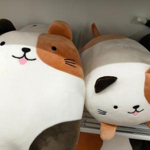 【ダイソー】猫の抱き枕