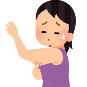 【医療ダイエット】クールスカルプティングのカウンセリングを受けてみた【痩身治療】